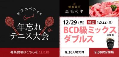 BCD-級ミックスダブルス